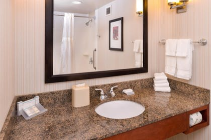 Bathroom | 1 King Bed Junior Suite | Hilton Garden Inn Baltimore/White Marsh