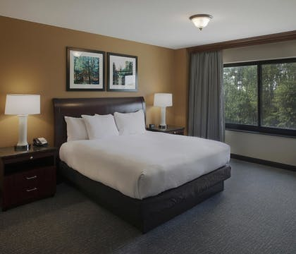 Bedroom | 1 King Suite | DoubleTree Suites by Hilton Bentonville