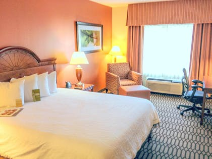 King Bed | 1 King 1 Bedroom Suite With Sofabed | Hilton Garden Inn Birmingham/Lakeshore Drive