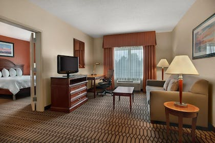 King Suite | 1 King 1 Bedroom Suite With Sofabed | Hilton Garden Inn Birmingham/Lakeshore Drive