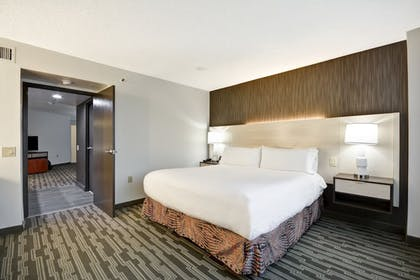 King Bed | 2 Room Suite - 1 King Bed | Embassy Suites by Hilton Charlotte