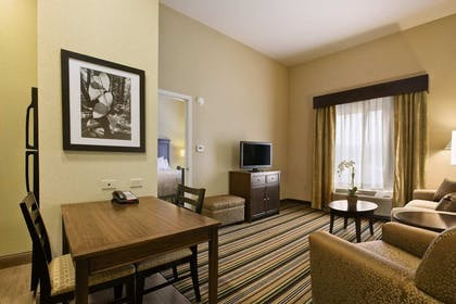 Living Area   1 King Bed 1 Bedroom Deluxe Suite Non-smoking   Homewood Suites by Hilton Charlotte/Ayrsley, NC