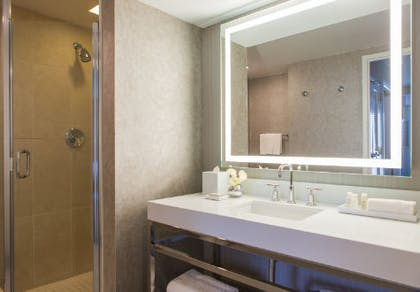 Bathroom | One Bedroom Executive Suite | Renaissance Chicago Downtown Hotel