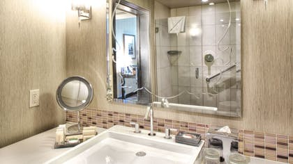 2c9f4e65_z.jpg | Paramount Spa One Bedroom Suite + Classic King Room  | theWit Chicago
