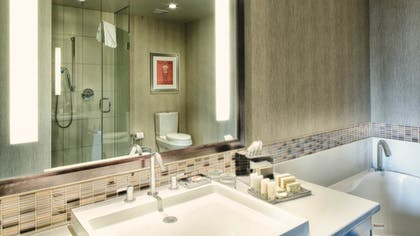 Bathroom | Luxury Spa King One Bedroom Suite + Classic Two Queen | theWit Chicago
