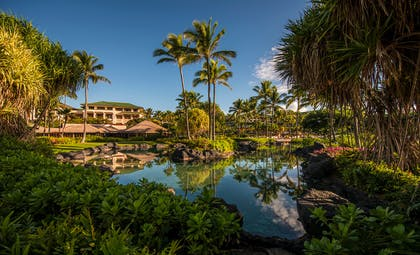 Lagoon | Grand Hyatt Kauai Resort & Spa
