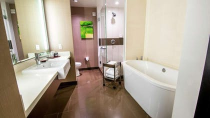 City Corner Suite Studio Suite At Vdara Hotel Amp Spa At