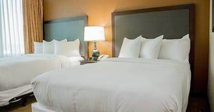 Double Beds | 2 Room Suite - 1 King Bed | Embassy Suites by Hilton Lexington Green