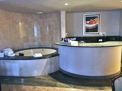 Jacuzzi 2 | Hollywood Grand Jacuzzi Suite | Hollywood Hotel