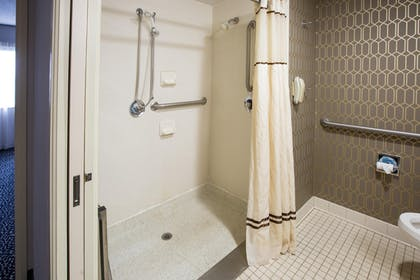 King Accessible Roll-In Shower | 2 Room Suite-1 King Bed-Non-smoking + 2 Room Suite-1 King Bed-Non-smoking-ADA Accessible | Embassy Suites by Hilton Louisville East