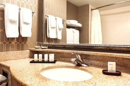 Guest Bathroom | 2 Room Suite-1 King Bed-Non-smoking + 2 Room Suite-2 Double Beds-Non-smoking-ADA Accessible | Embassy Suites by Hilton Louisville East