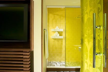 Indoor Shower | Platinum Sun Suite King | Dream South Beach