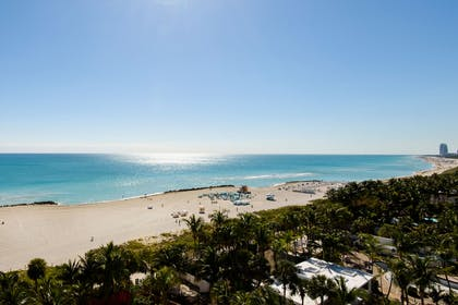 View | Premier Oceanfront Corner Junior Suite | Faena Hotel Miami Beach