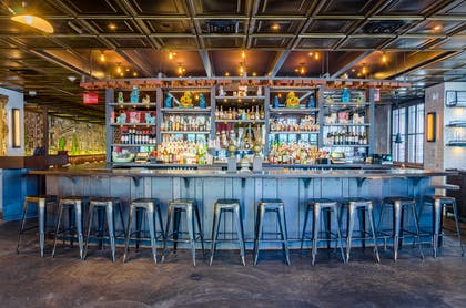 Bar | The Confidante Miami Beach