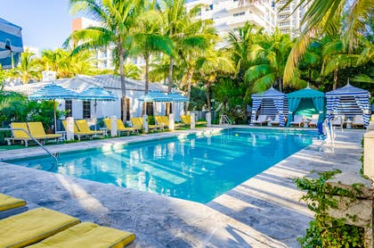 Pool Area | The Confidante Miami Beach