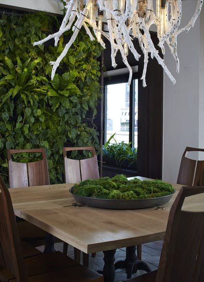 Dining Room Table | Greenhouse Suite | 1 Hotel Central Park