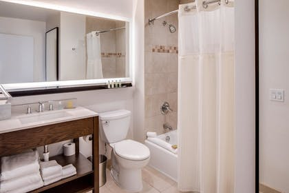 bathroom.jpg | 1 King Corner Junior Suite City Vw w/Sofabed | DoubleTree by Hilton Hotel & Suites Jersey City