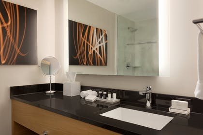Bathroom | Executive Queen Suite with Sofabed | Executive Hotel Le Soleil New York