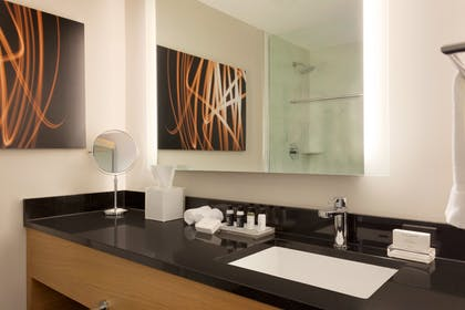 Bathroom | Executive Queen Suite with View | Executive Hotel Le Soleil New York
