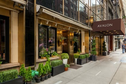 Exterior 1 | The Avalon Hotel