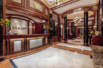 Lobby  | The Avalon Hotel