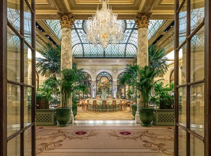Palm court | The Plaza Hotel