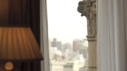 Window | City View Suite | The Ritz-Carlton New York, Central Park