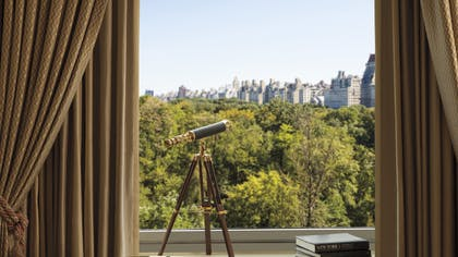 Window | Parkview Suite | The Ritz-Carlton New York, Central Park