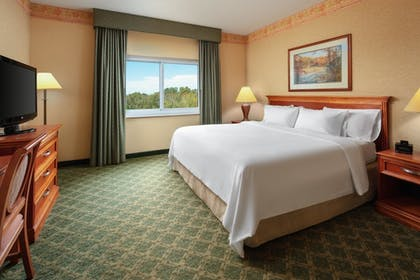 King Bed | 2 Room Suite - 1 King Bed | Embassy Suites by Hilton Charleston Airport Hotel & Convention Center