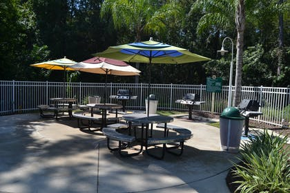 BBQ Area | Cypress Pointe Resort