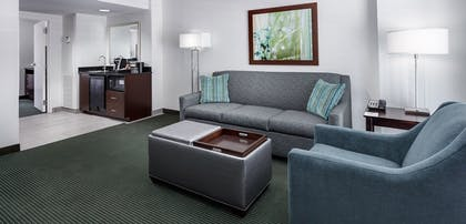 Living room | 2 Room Deluxe Suite - 1 King Bed | Embassy Suites by Hilton Orlando Lake Buena Vista Resort