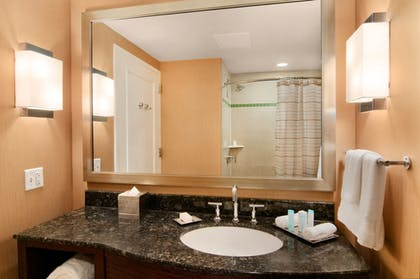 ORLHilbath.jpg | Presidential Suite - Bedroom / 1 King Bed | Hilton Orlando