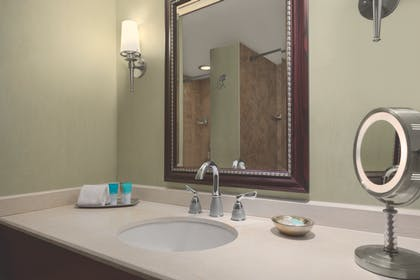 Bathroom Vanity | VIP Suite | Hyatt Regency Orlando International Airport