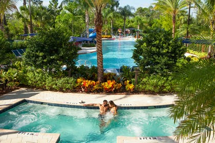Springs Jacuzzi and Pool | The Grove Resort & Spa Orlando
