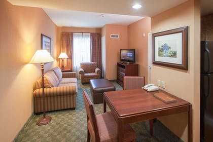 Living Room | 1 King Bed 1 Bedroom Suite Non-smoking + 1 King Bed 1 Bedroom Suite Non-smoking | Homewood Suites by Hilton San Antonio-North