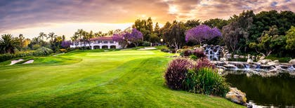 Aviara Golf - Clubhouse with purple flowers | Park Hyatt Aviara Resort, Spa & Golf Club