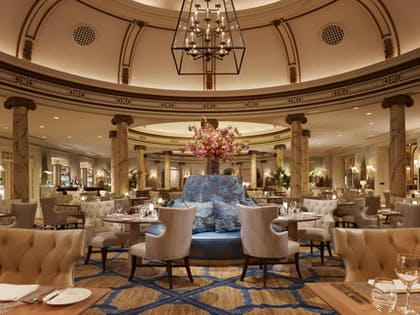 Laurel Court Restaurant and Bar | Fairmont San Francisco