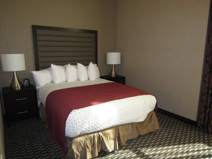 Queen Bed | 2 Room Suite - 1 Queen Bed - Non-smoking | Embassy Suites by Hilton St. Louis Downtown