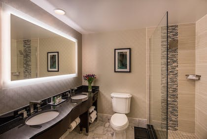 Bathroom | 1 King Executive Suite | Hilton St Louis Downtown at the Arch