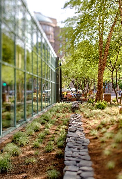 Outdoor Grounds | Park Hyatt Washington
